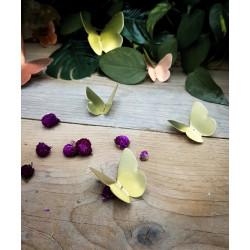 Trio de mini Papillons