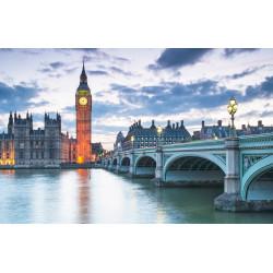 LONDRES LIBERTÉ - 12 août 2020