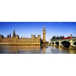 WEEK-END LONDRES LIBERTÉ - 29 et 30 août 2020