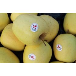 pommes golden de Savoie